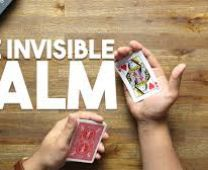 the invisible palm